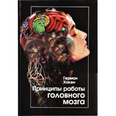 Принципы работы головного мозга. Синергетический подход к активности мозга, поведению и когнитивной