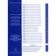 Путеводитель по прецедентной практике Европейского Суда по правам человека за 2007 г.